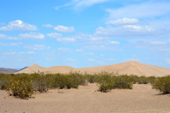 Big Dune and big sky.Photo by Osie Turner