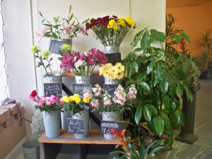 Whenever possible, the flowers at Gaia are certified sustainably grown cut flowers.<br><em>Photo by Diane Taylor</em>