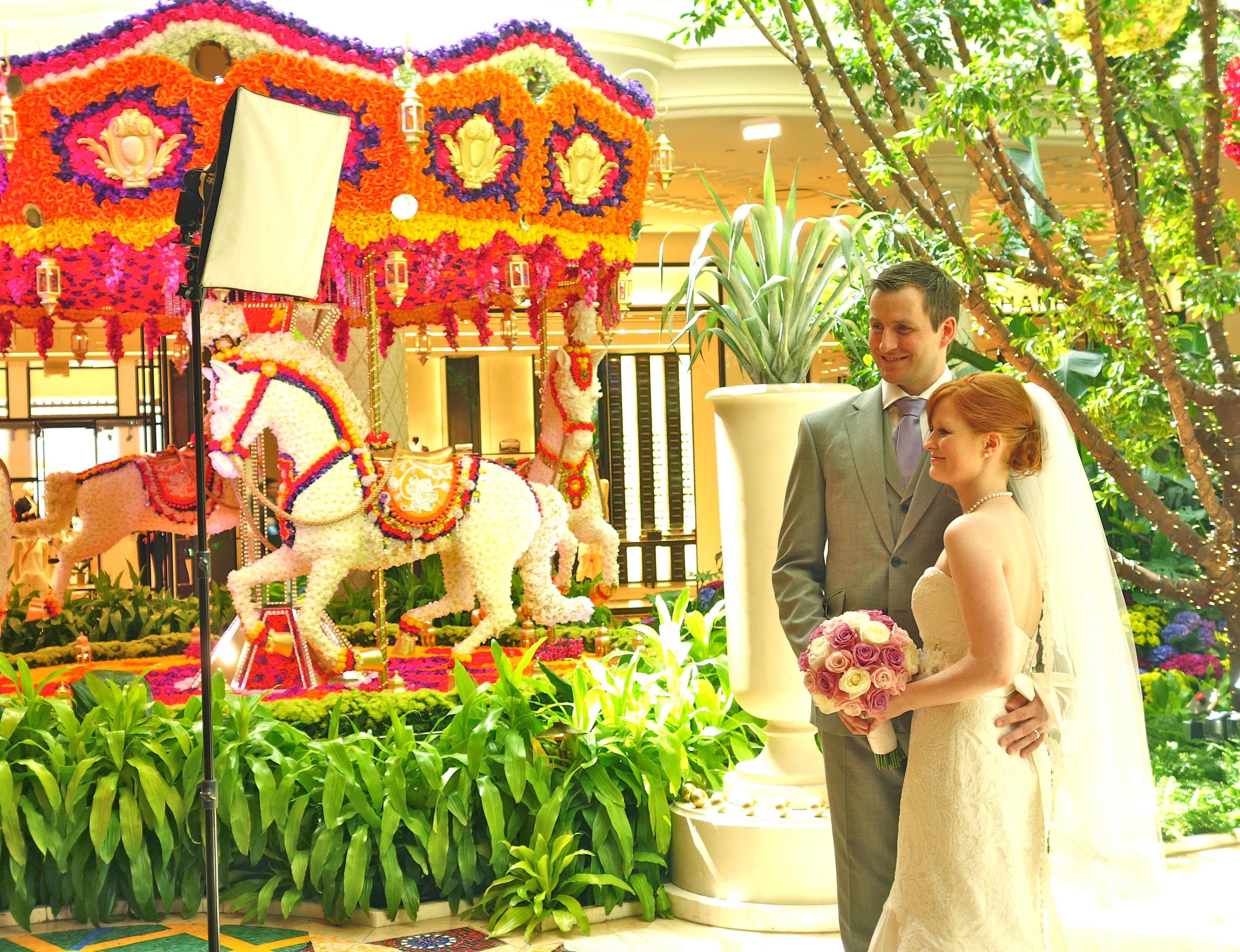 Vegas.com - Las Vegas Hotels, Shows, Tours, Clubs & More