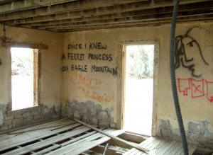 Inside one of the abandoned houses along the road leading out of town.Photo by Osie Turner