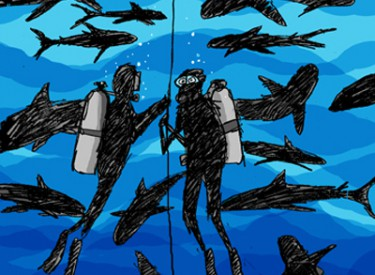 swimming with sharks, a new cartoon by Jerry king
