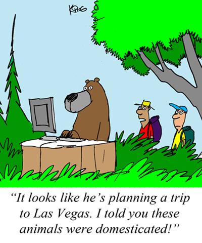 bear plans trip to las Vegas