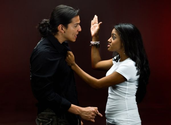 theories on domestic violence causes Facilitator: to be effective, intervention strategies for domestic violence must be based on a clearly articulated theory about the cause of domestic violence the theory of violence on which we rely will dictate our response to the problem.